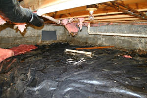 Don't let this be your moldy, damp, inefficient crawl space in New York.